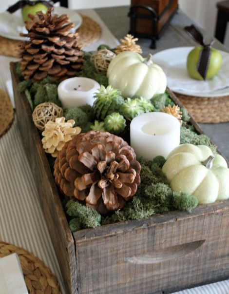 screenshot pumpkins pinecones centerpiece