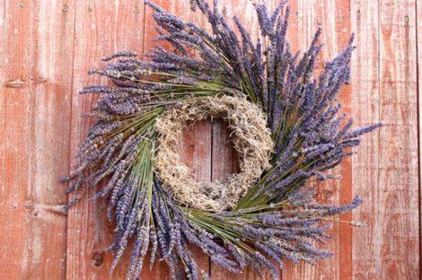 screenshot lavendar wreath